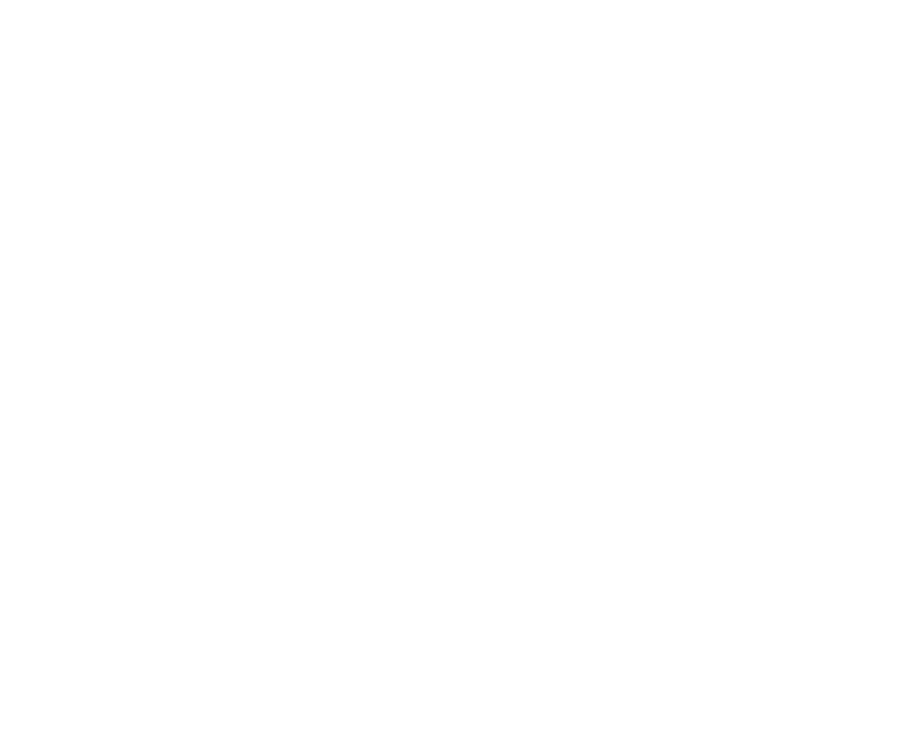 Travel Nepal logo white