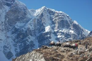 Local people carrying goods in the Everest Region