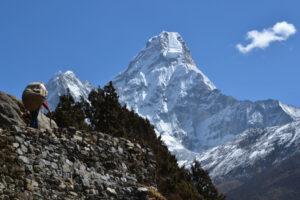 Porter trekking to Everest, by Tashi Dai