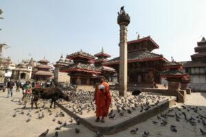 Holy man and a cow in Kathmandu, by Tashi Dai