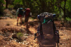 Trekkers with backpacks