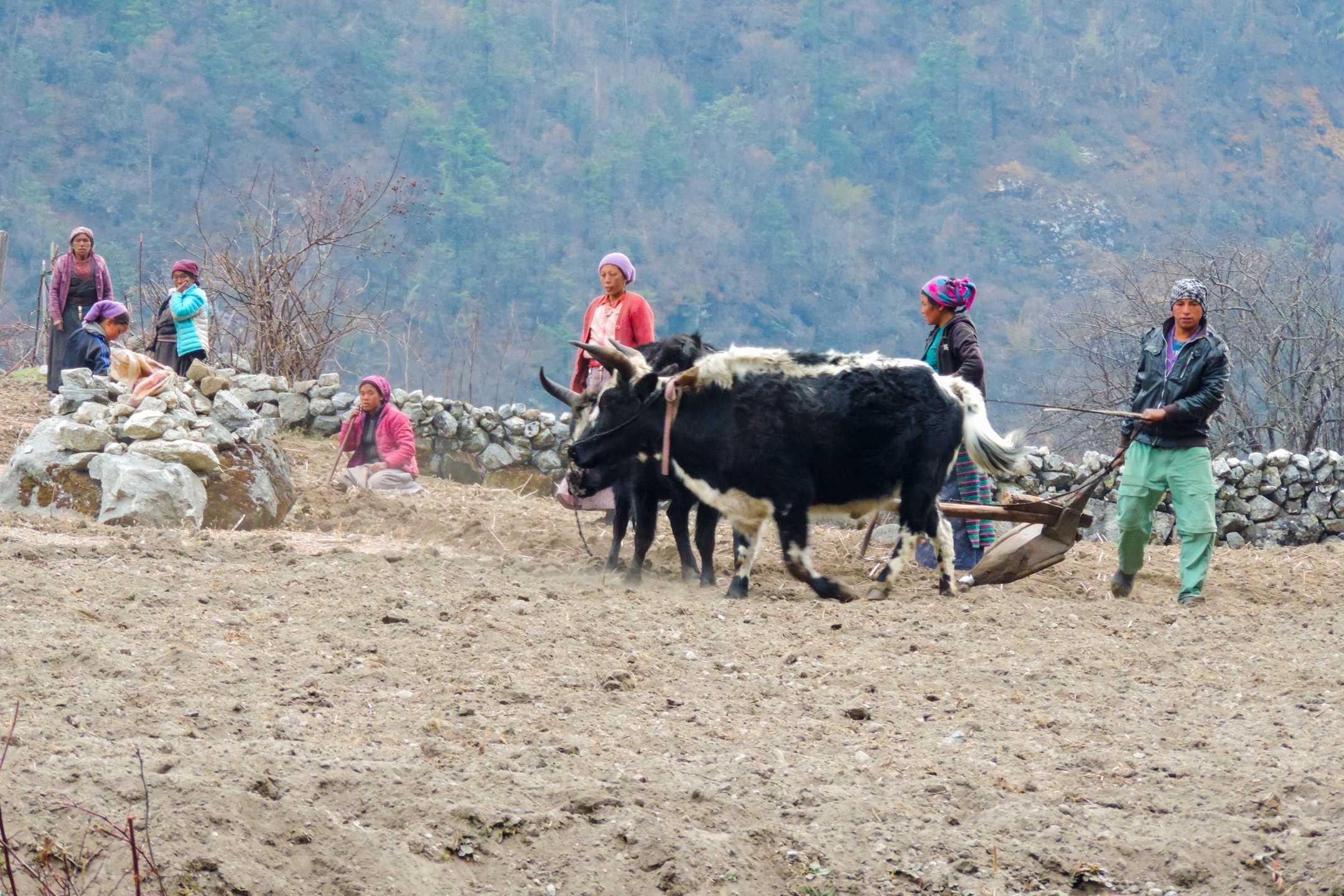 Local people in the Tamang region