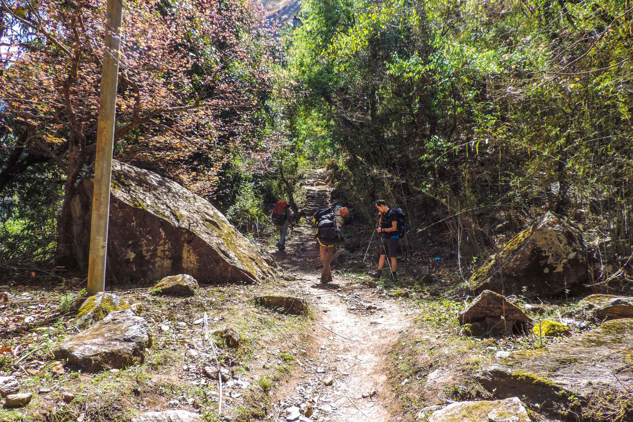 Trekkers on the Tamang trail